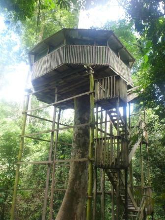 Kakum-tree-house