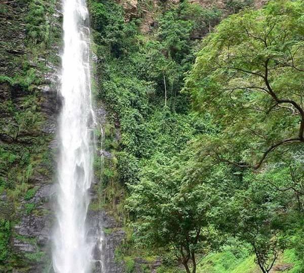 1996_wli-water-falls-600x540